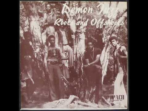 Demon Fuzz - Remember Biafra