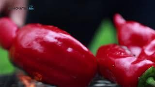 Шашлычный РАЙ с Деяном Чотра № 3 Сербский салат