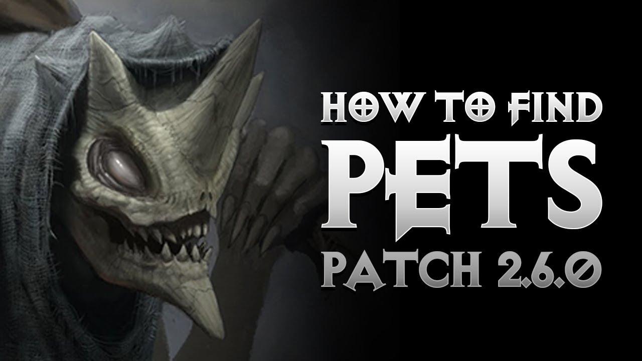 Diablo 3 - HOW TO FIND PETS IN SEASON 11 - MENAGERIST