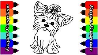 Раскраска Собака Рисуем Раскраски Видео для детей // Coloring book Dog Draw Coloring pages