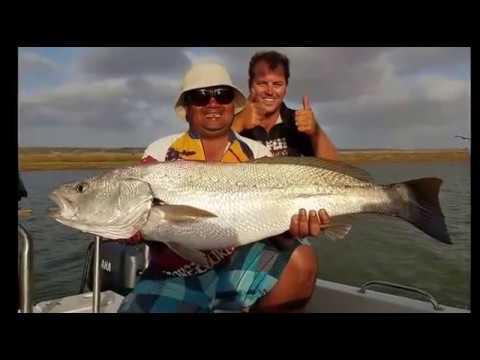 Go Fish Tours - Mossel Bay