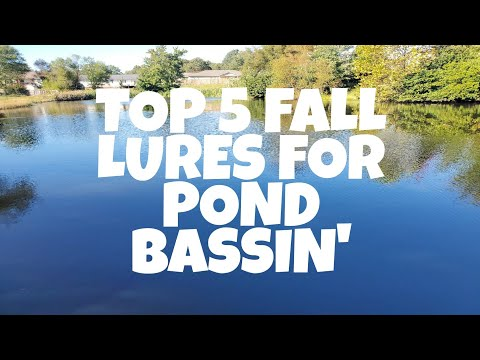 Top 5 Fall Lures For Pond Bass Fishing
