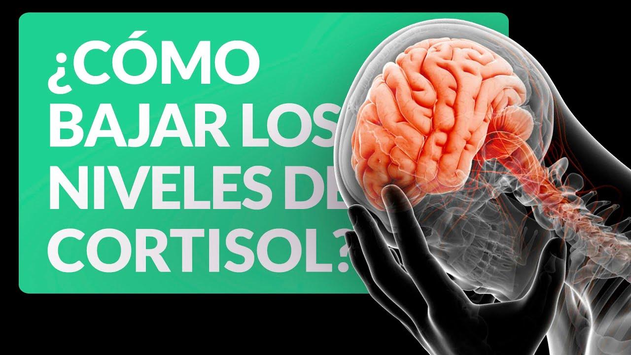 Como bajar el nivel de cortisol en el cuerpo