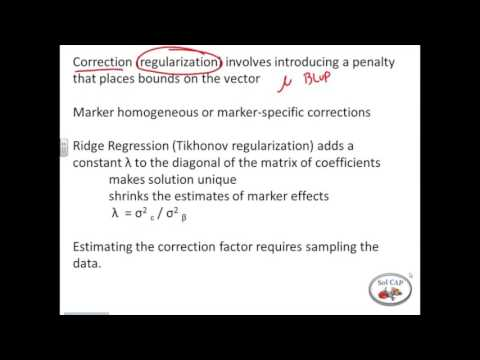 Genome Wide Selection with rrBLUP Part 1