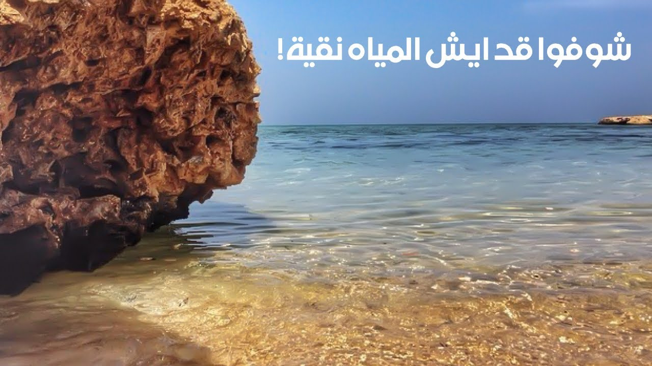 جولة في شاطئ الرأس الأبيض في الرايس في السعودية مع الأصدقاء ضمن رحلة كروز السعودية Youtube