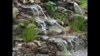 Строительство пруда или создание водоема.(Декоративный водоём — это самостоятельное гидротехническое сооружение, которое может служить как для..., 2013-03-04T11:32:03.000Z)