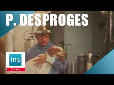 Pierre Desproges vétérinaire - Archive INA