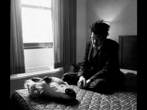 Sparklehorse Dog Door Lyricswmv Youtube