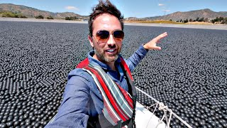 Why Are 96000000 Black Balls On This Reservoir