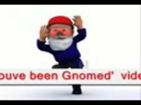 gnome funny meme  haha