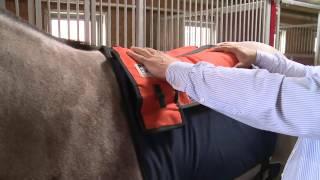 CPHE - Die Schabracke Warm-Up von Mounty