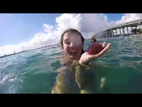 Winter Break 2016- Jupiter, Florida || GoPro