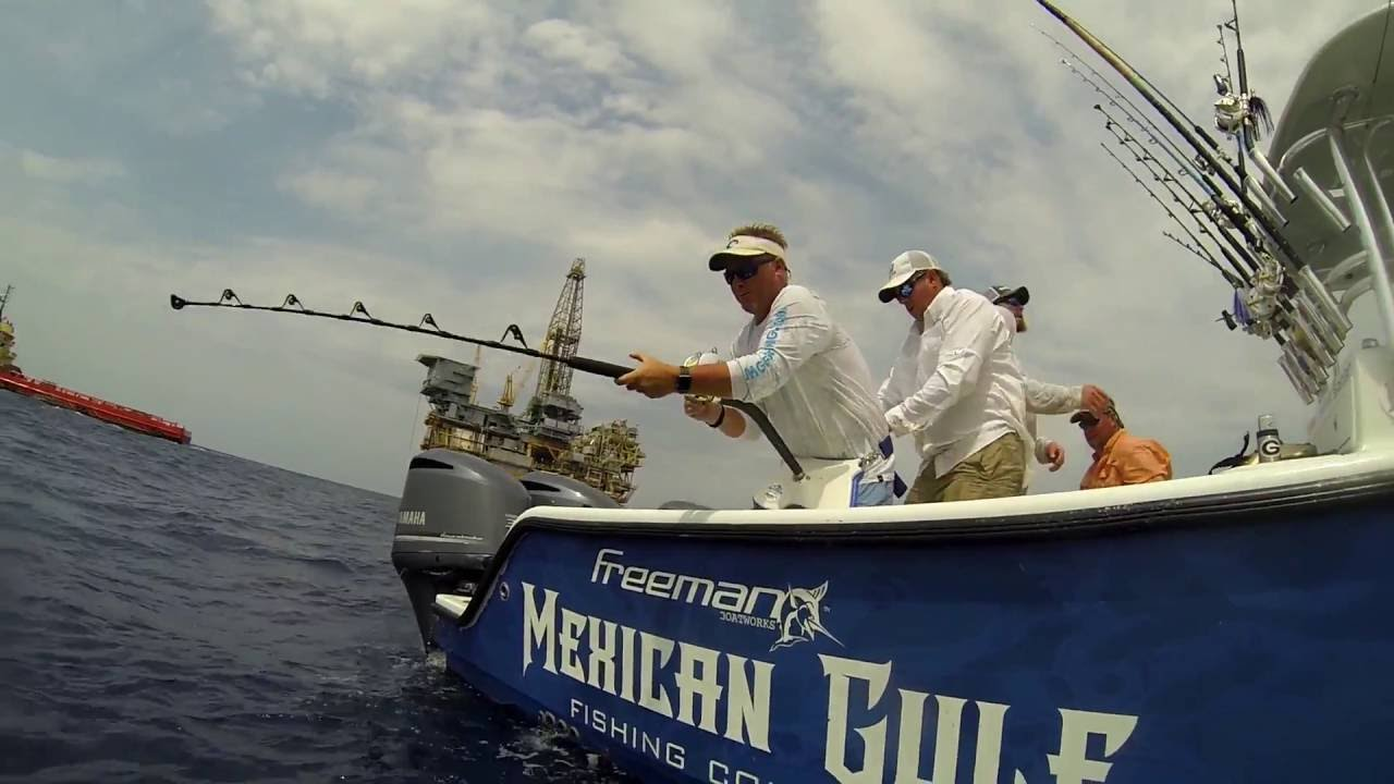 Venice la tuna fishing with mexican gulf fishing co 2016 for Mexican gulf fishing company
