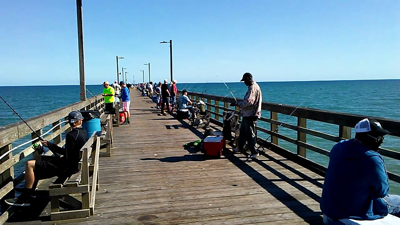 4 11 17 seaview fishing pier fishing report youtube for Seaview fishing pier