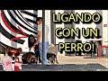 LIGANDO MADURAS CON UNOS PERROS *tienes que verlo* || THE PAPS