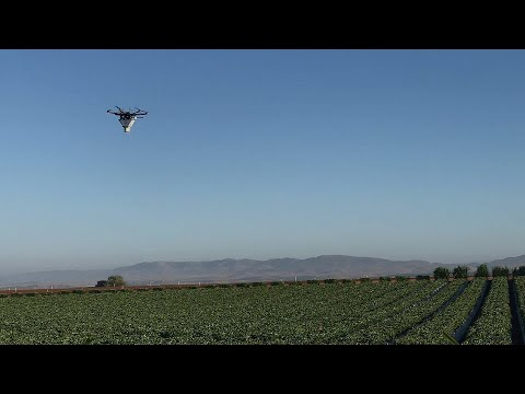 Drone-based Aerial Biocontrol by Koppert & UAV-IQ