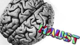 Dlaczego mózgi się zmniejszają! - Haust [ Kuba Jankowski ]
