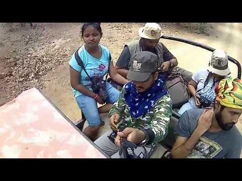Vlog # 20 The Lioness | Gir National Park | Sasan Gir | Part 3| VJS Vlogs