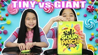GIANT VS TINY CANDY CHALLENGE!