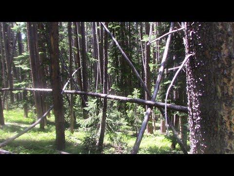 Return to Holy Cross 2017, Colorado Bigfoot