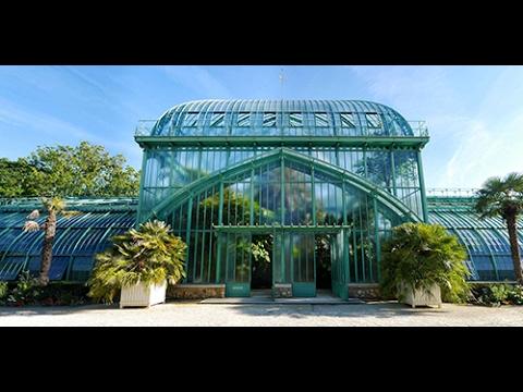 Visite des serres d 39 auteuil jardin botanique de la ville for Jardin botanique paris