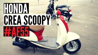 Скутер Honda Crea Scoopy 50 AF55 4T Digital dashboard - Walkaround, Kupiscooter.ru