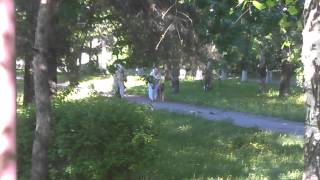 Нападение собак с тетками в парке у Красного Маяка в Ярославле(21 мая 2013 года, в Ярославле, у завода