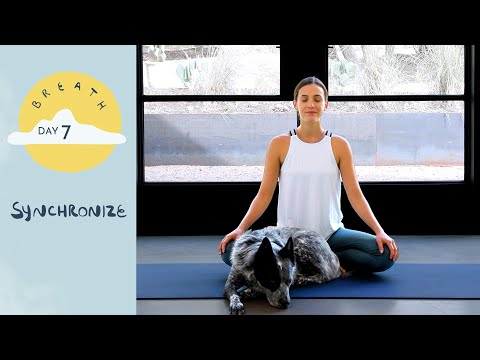 Day 7 - Synchronize  |  BREATH - A 30 Day Yoga Journey