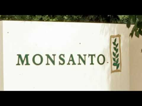 Monsanto Admits to Having An Entire Shill Department to Fight Anto-GMO Research