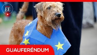 Perros y amos marcharon en Londres para rechazar el brexit | El Espectador