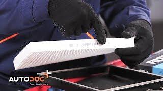 Kaip pakeisti salono filtras VW LUPO PAMOKA   AUTODOC