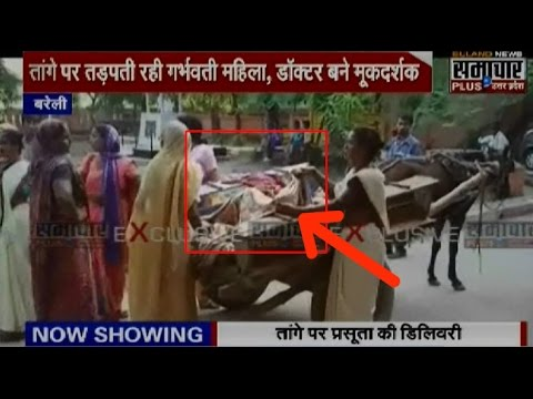 Shocking: A Woman Gave Birth To A Girl Child On Horse Cart In Bareilly