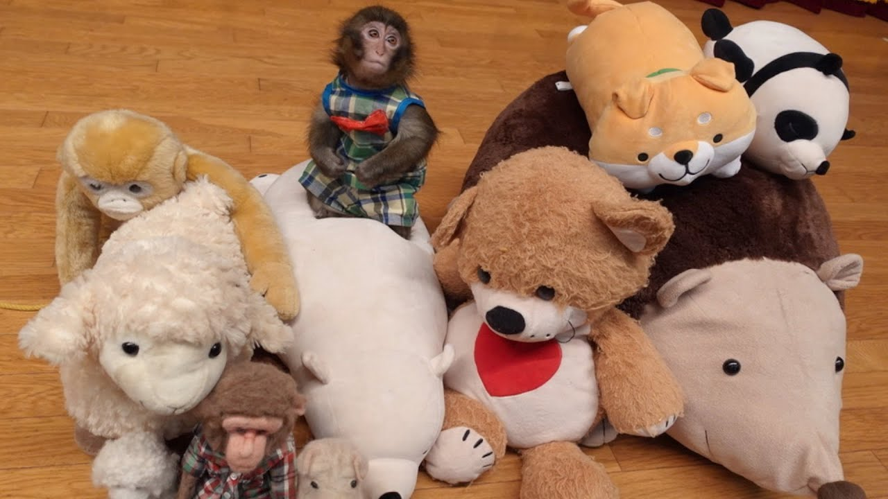 お友達の動物を全員「ぬいぐるみ」にされたら子猿はどうする?