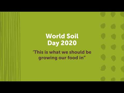 World Soil Day 2020: 'This is what we should be growing our food in.'