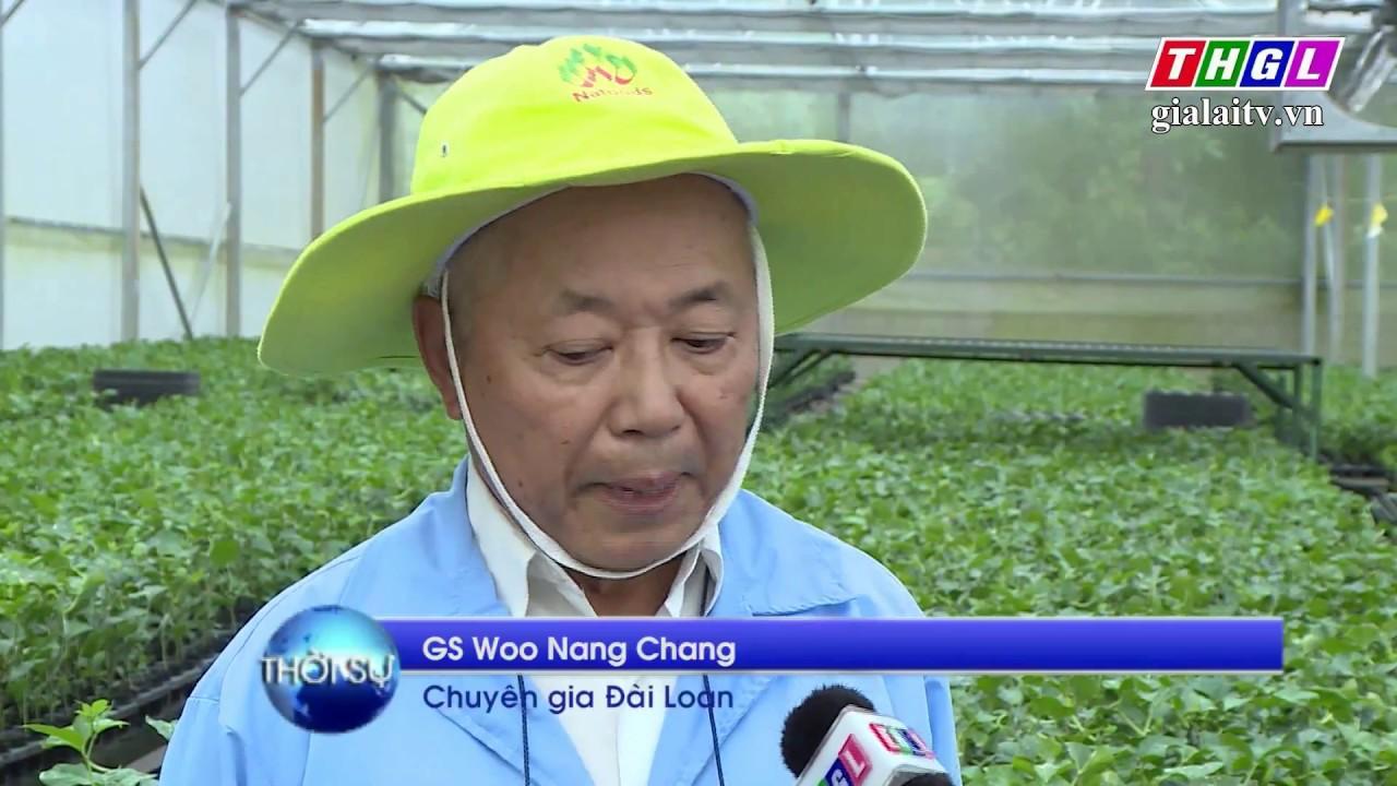 Nafoods – Doanh nghiệp hàng đầu Châu Á về xuất khẩu chanh dây cô đặc