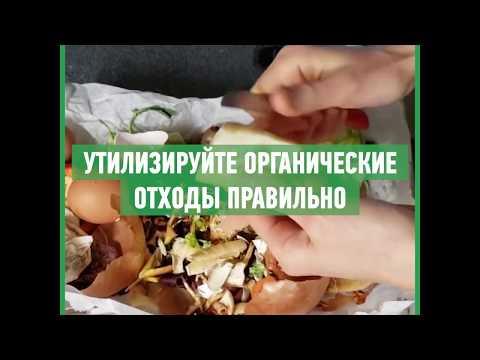 Как правильно утилизировать органические отходы и приготовить компост