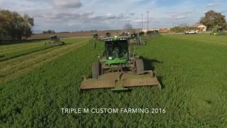 Triple M - 11 Alfalfa Swathers in 1 Field