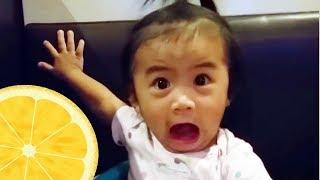 Lustige Babys probieren neue Nahrungsmittel zum ersten Mal