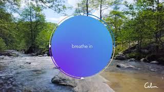 Calm | Breathe Bubble