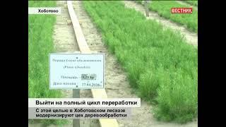 Модернизация цеха в Хоботовском лесхозе. Сюжет из передачи ТВ Первомайского района от 18 июня