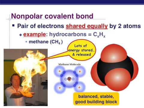 1. Chemistry,carbon and water