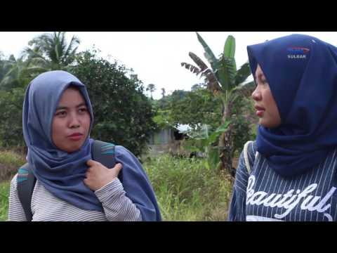 NEGERI INDONESIA   JELAJAH PESONA MAMUJU UTARA