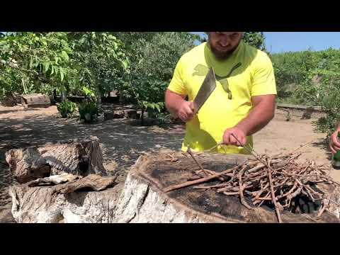 Karobkada Hise Verilmish Balig. Рыба горячего копчения в картонной коробки