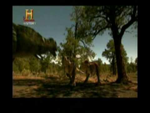 Mundo Jurásico - Tiranosaurio Rex - Parte 6 de 7
