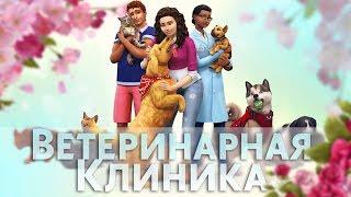 Ветеринарная клиника  | The Sims 4: КОШКИ И СОБАКИ