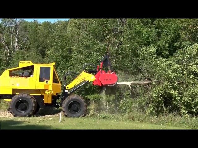 Land Clearing - Tree Takedown | Geo-Boy