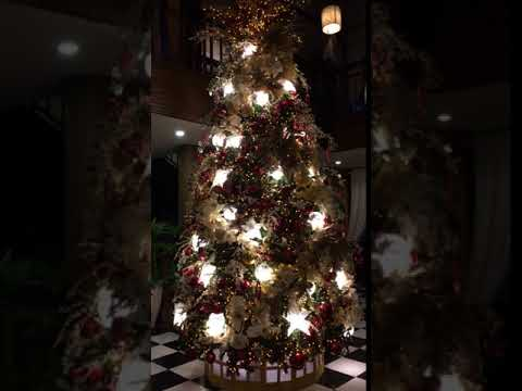 Pineapple Christmas 🎄 Tree 😘