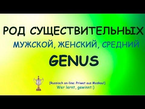 №4.РКИ Род существительных: мужской, женский, средний.Genus:Maskulina,Feminina,Neutra