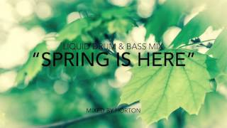 """Spring Is Here"" ~ Liquid Drum & Bass Mix 2016"