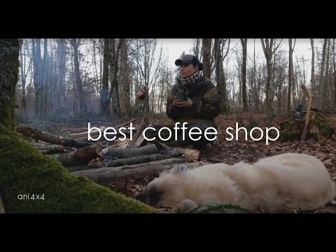 Best coffe shop in the world: the forest | El mejor café del mundo: en el bosque